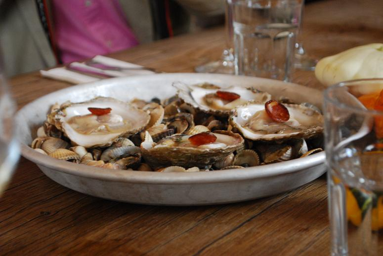 Oysters_sm